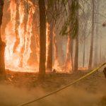 أكثر من 100 حريق غابات ضخم في الولايات المتحدة