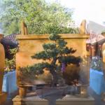 فيديو| هوي أن.. مدينة السحر والجمال في فيتنام