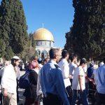 الأوقاف الفلسطينية: 22 اقتحاما للأقصى و51 منعا للأذان في الحرم الإبراهيمي خلال أغسطس