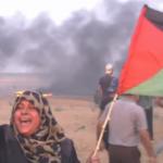 فيديو| تقرير: إصابة عشرات الفلسطينيين في الجمعة الـ23 من مسيرات العودة لكسر الحصار