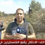 فيديو| مراسل الغد: إصابة فلسطيني برصاص الاحتلال في جبل الريسان برام الله