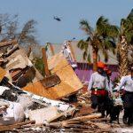كلاب مدربة للبحث عن ناجين بعد إعصار فلوريدا