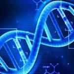أكثر من 100 عالم في الصين يصفون تعديل جينات البشر بأنه «جنون»