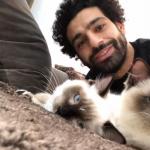محمد صلاح يدخل على الخط في قضية تصدير القطط والكلاب