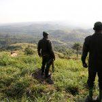 مسلحون يقتلون 18 مدنيا في الكونغو
