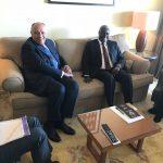 وزير الخارجية المصري يلتقي رئيس مفوضية الاتحاد الأفريقي