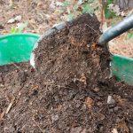 الأمم المتحدة والكويت ستطرحان مشاريع لتطهير التربة بقيمة 2.4 مليار دولار
