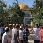 75 اعتداء على المسجدين الأقصى والإبراهيمي خلال شهر يوليو المنصرم
