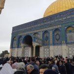 إيسيسكو: اقتحام الاحتلال باحات الأقصى استفزاز وقح لمشاعر المسلمين