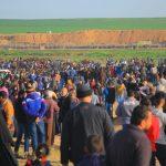 استشهاد فلسطيني وإصابة 22 آخرين برصاص الاحتلال بغزة
