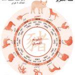 إنفوجرافيك| الجالية الصينية في الأرجنتين تحتفل ببدء عام الخنزير