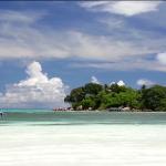 كارثة طبيعية تهدد حياة الشعب المرجانية في المحيط الهندي