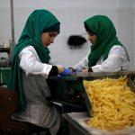 مصنع للبطاطا في غزة يوفر فرص عمل للنساء ويدعم المزارعين
