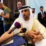 وزير الطاقة الإماراتي يتوقع اجتماعا إيجابيا لـ«أوبك+» في مارس