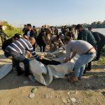 البرلمان العراقي يصوت بأغلبية لإقالة محافظ نينوى بعد كارثة العبارة