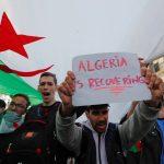 الجزائر تتعافى