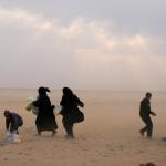 الأمم المتحدة: وفاة 84 سوريا على الأقل خلال فرارهم من دير الزور