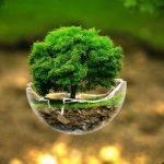 إنفوجرافيك| في «يوم الأرض».. 8 طرق للمحافظة عليها