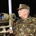 الجزائر تعلن الحرب على الفساد وتوقيف رجال أعمال مقربين من بوتفليقة