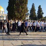 الخارجية الفلسطينية: الاحتلال يستغل الأعياد اليهودية و«صفقة القرن» لتمرير أهدافه