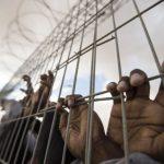 التعذيب وراء استشهاد مئات الأسرى الفلسطينيين في سجون الاحتلال