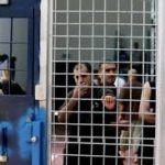 نادي الأسير: هذا ما يواجهه الفلسطينيون في سجون الاحتلال
