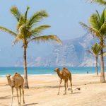 سلطنة عمان تقدم إعفاءات ضريبية للاستثمارات السياحية في مسندم