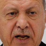 أردوغان: سأجتمع مع بوتين وميركل وماكرون في 5 مارس لمناقشة الوضع في إدلب