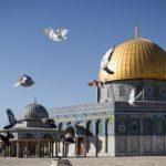 الأوقاف الفلسطينية ترصد انتهاكات الاحتلال بحق الأقصى