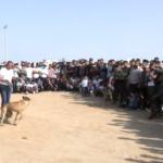 ترويض الكلاب.. هواية انتشرت في أوساط الشباب بغزة