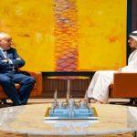 الإمارات تشدد على ضرورة نزع السلاح من الجماعات الإرهابية في ليبيا