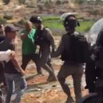قوات الاحتلال تعتدي على الفلسطينيين بالضرب المبرح في منطقة واد الغروس بمدينة الخليل