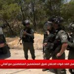 هيئة مقاومة الاستيطان: سنعاود بناء خيمة المعتصمين في وادي حمص