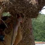 «منحوتات القش».. مهرجان سنوي في فالوار الفرنسية