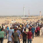 إصابة عشرات الفلسطينيين برصاص الاحتلال على حدود غزة