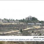 أهالي قريوت في نابلس يستعيدون قطع أراضٍ من المستوطنين
