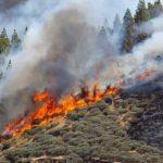 حريق جديد في كبرى جزر الكناري الإسبانية وإجلاء سياح وسكان