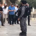 مئات المستوطنين اليهود يقتحمون المسجد الأقصى تحت حراسة قوات الاحتلال