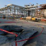 وكالة الطاقة: استهداف أرامكو لن يؤثر بشكل كبير على إمدادات الغاز المسال