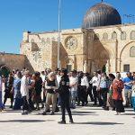 الأوقاف الاسلامية: 1167 مستوطنا اقتحموا باحات المسجد الأقصى منذ الصباح