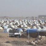 المرصد السوري: فرار نحو 100 من عائلات تنظيم داعش من مخيم عين عيسى