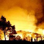فرار المشاهير وإحتراق 5 منازل بسبب حريق الغابات في لوس انجلوس
