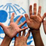 اليونيسيف: ثلث أطفال العالم دون الخامسة يعانون من سوء التغذية