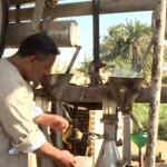 كيف تصنع الزيوت العطرية في مصر؟