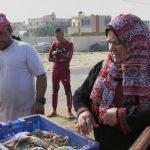 «أم جميل».. فلسطينية تبيع السمك في غزة لمواجهة الفقر والمرض