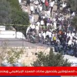 آلاف المستوطنين يقتحمون ساحات المسجد الإبراهيمي