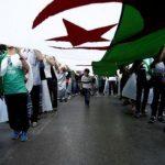 فيديو| صحفي يكشف أسباب المطالبة بإجراء الانتخابات الجزائرية