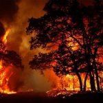 حرائق الغابات تشتعل قرب منطقة صناعية في أثينا وتعطل القطارات