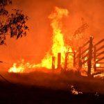 رجال الإطفاء في أستراليا يكافحون لاحتواء حرائق الغابات