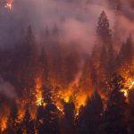 الحرائق تطوق سيدني وتغلف المدينة بدخان كثيف